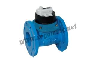 Đồng hồ đo lưu lượng nước Itron Woltex Dn150