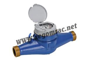 Đồng hồ nước Itron Multimag DN32